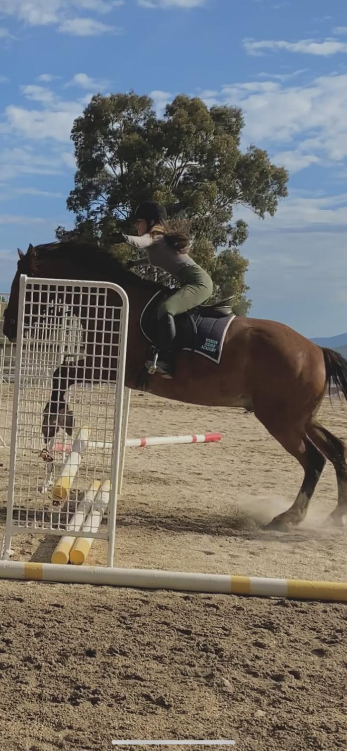 What are your thoughts on horse riding?