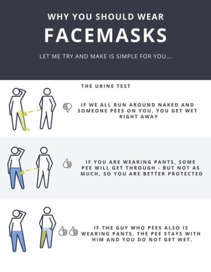 Covid19: what is the main reason you're wearing the mask?