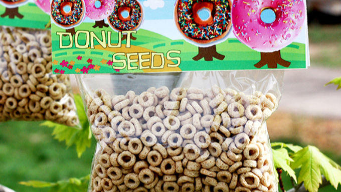 Are Cheerios seeds for doughnuts?