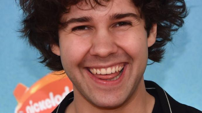 Does David Dobrik have the most punchable face of all time?