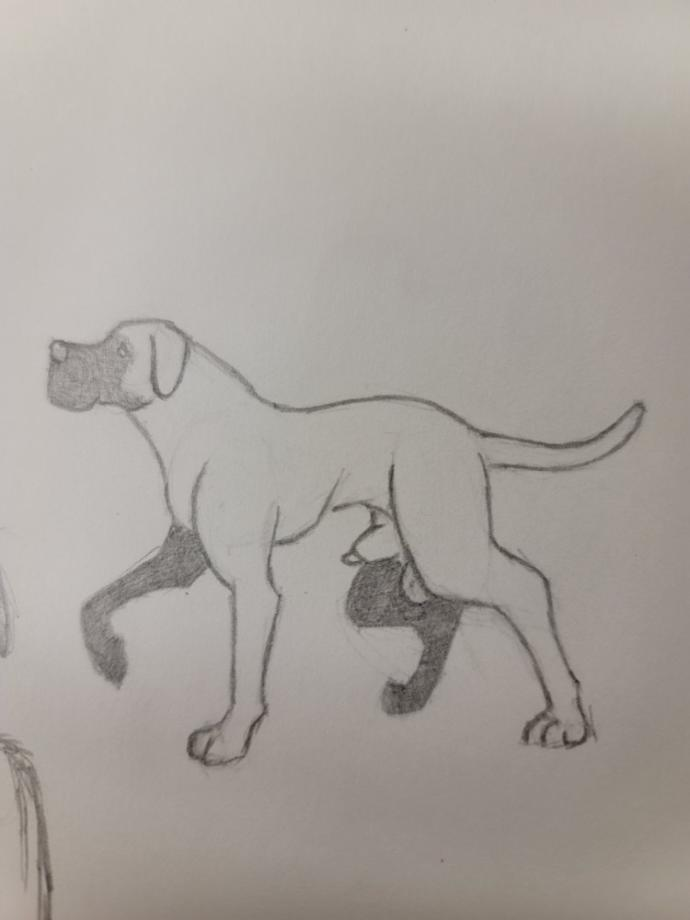 I drew a picture of my dog, thoughts on getting better?
