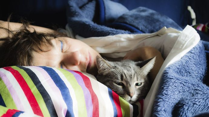 Do you usually sleep with or cuddle with your Cat or Dog in bed?