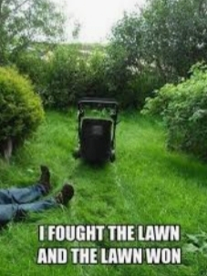 Swear that was me other day cutting the backyard😱