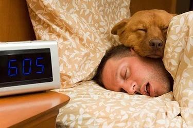 How many hours do you get of sleep a night?