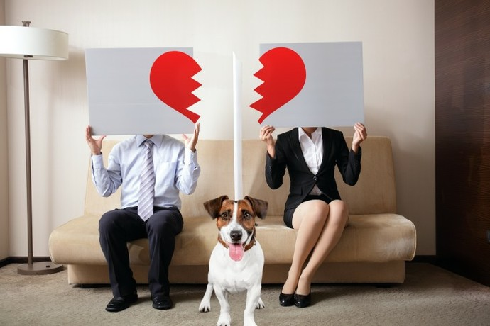 If a couple has a pet together and they end up breaking up, who should get to keep the pet?