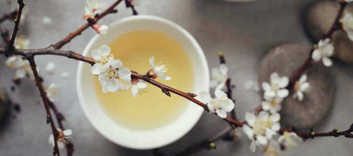 What does white tea taste like?
