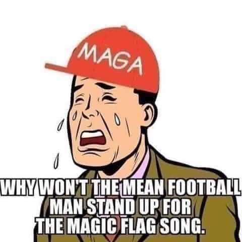 Why do Trump Supporters get triggered so easily?