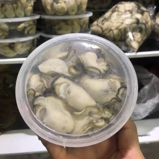 Are those oysters in the box still alive?