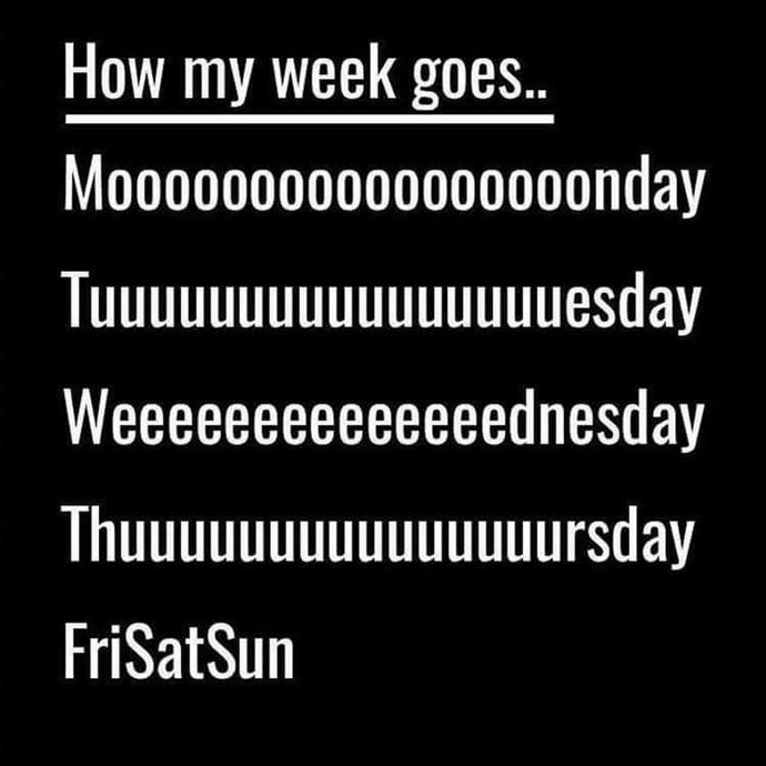 Which part of the week goes fastest for you?
