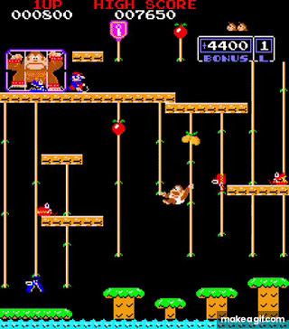 Have you ever played the arcade version of Donkey Kong Jr. ?