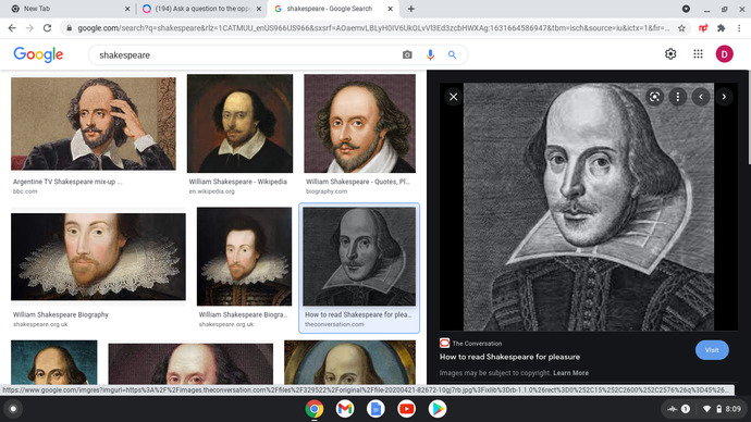 Is it time to burn Shakespeare?