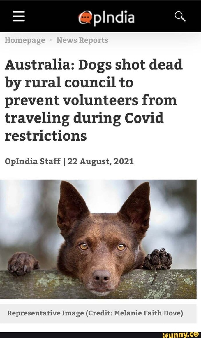 Still Worried About Covid?