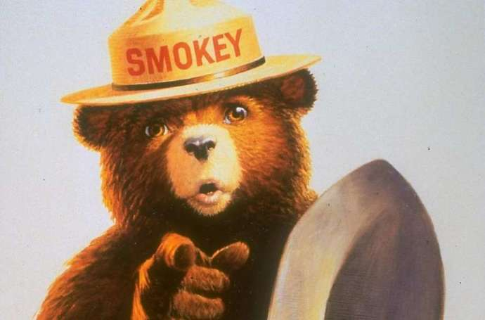 Only who can prevent forest fires?