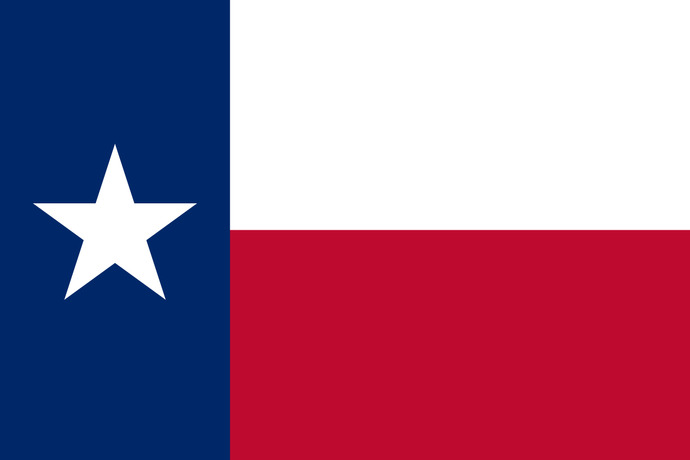 Is your opinion of the State of Texas positive or negative?