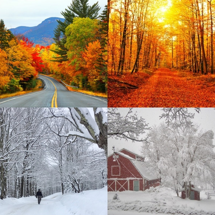 Where would you rather live of these places?