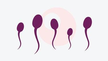 Shouldn't we protect Sperm cells from being killed?