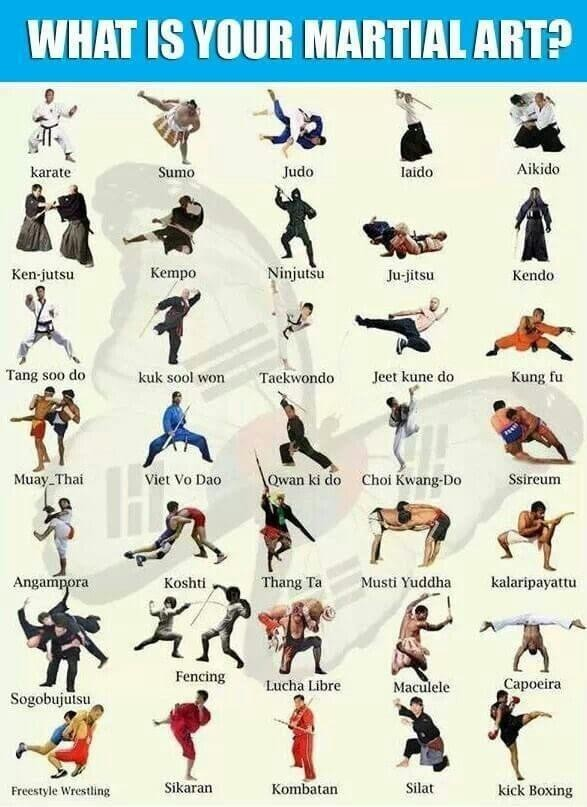 Have you ever created your own style of martial arts?