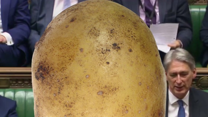 potato in government