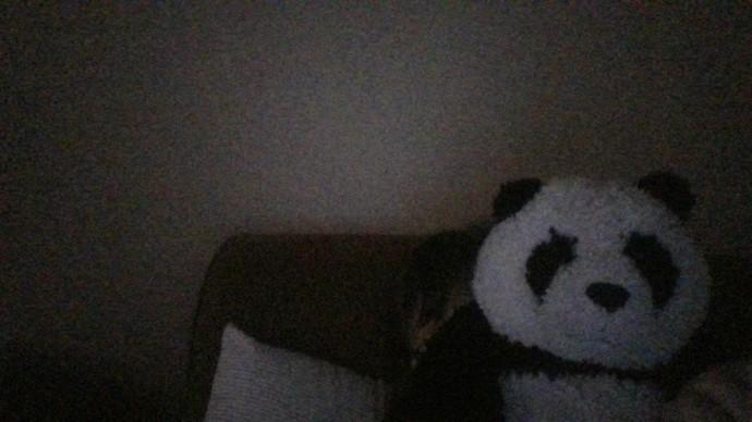 My Mia panda