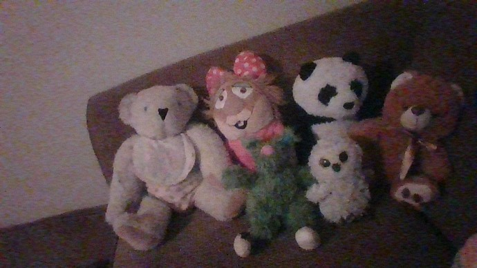 What do you think of my favorite stuffed animals?