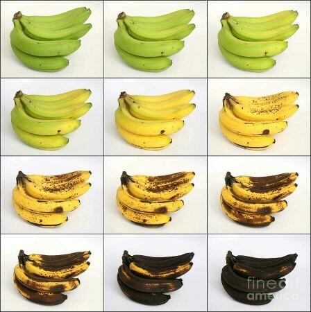 How ripe do you like your bananas?