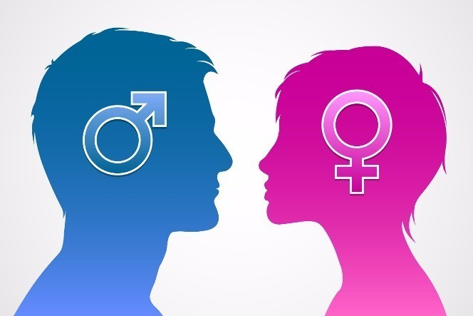 If you suddenly became the opposite gender from what you really are for one year, what would you do?