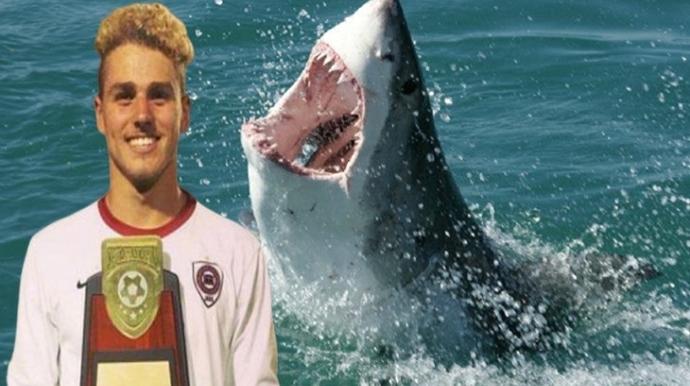 Have you ever been attacked by a shark or other fish while swimming off the coast of America?