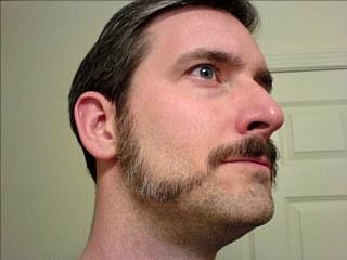 male sideburns